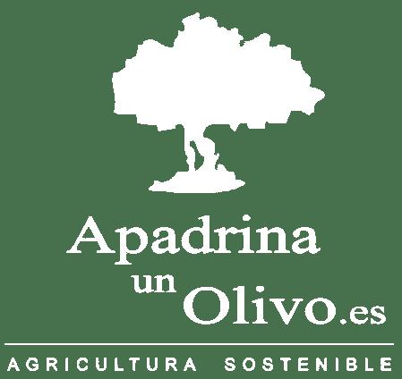 Apadrinaunolivo.es Apadrinar o Adoptar un Olivo Milenario