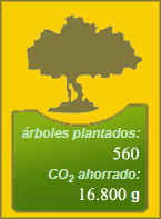¿Cómo puedes compensar tu huella de carbono?